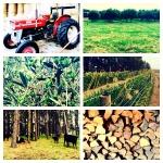 Opa's farm: our family far